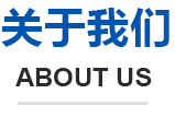 安康网络公司