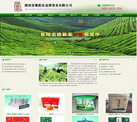 陕西省紫阳县龙潭茶业有限公司